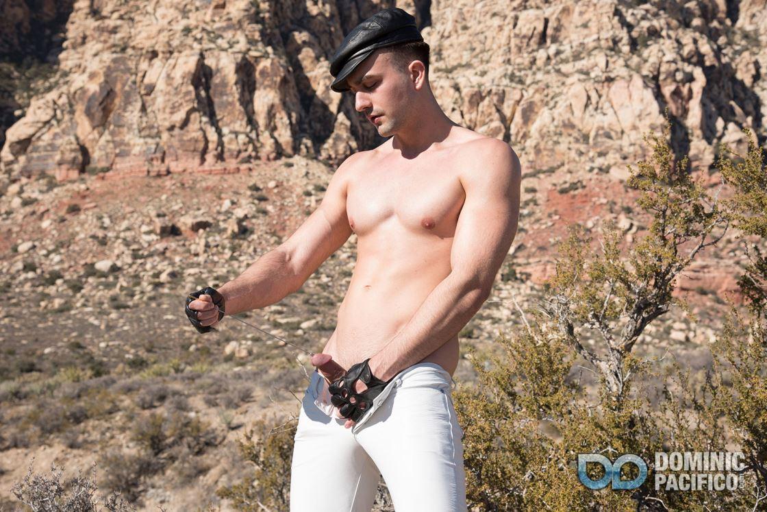 Desert Cock Sounding